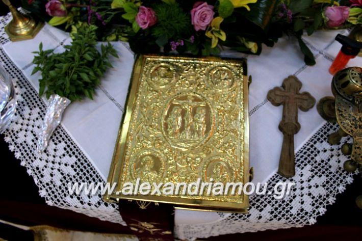 alexandriamou.gr_orkomosiadimotikousumbouliou2019IMG_2702