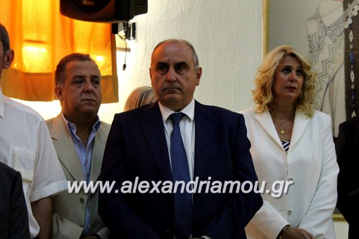 alexandriamou.gr_orkomosiadimotikousumbouliou2019IMG_2830