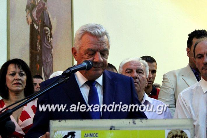 alexandriamou.gr_orkomosiadimotikousumbouliou2019IMG_3033