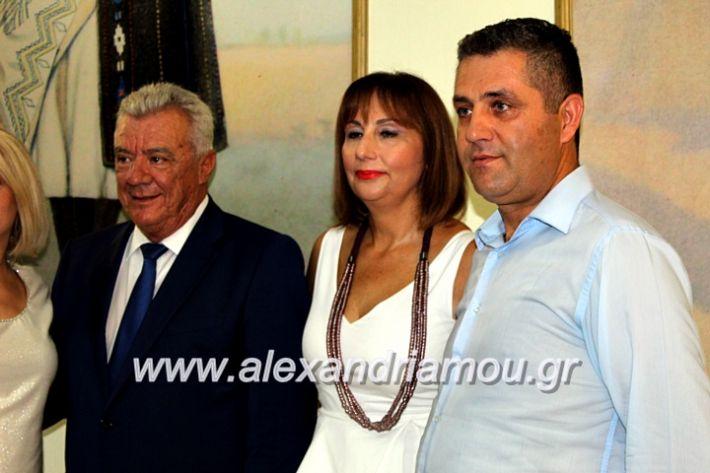 alexandriamou.gr_orkomosiadimotikousumbouliou2019IMG_3487