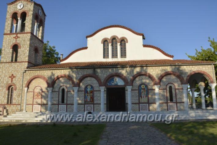 alexandriamou.gr_paisioskampoxori18003