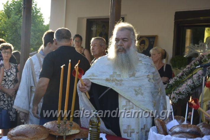 alexandriamou.gr_paisioskampoxori18017