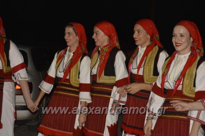 alexandriamou.gr_paisioskampoxori18056