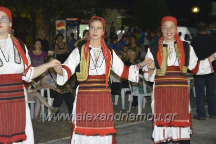alexandriamou.gr_paisioskampoxori18064