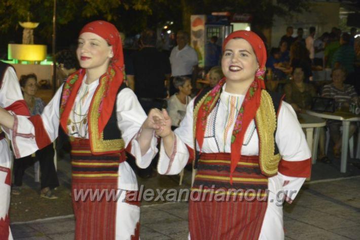 alexandriamou.gr_paisioskampoxori18067