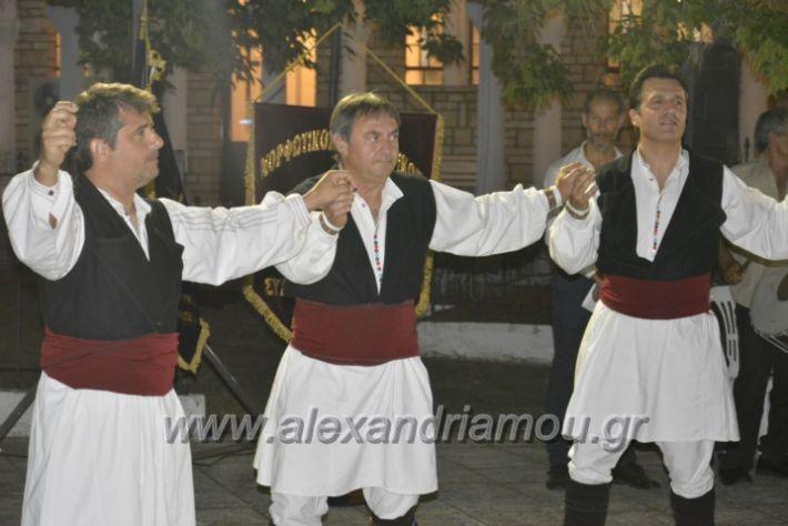alexandriamou.gr_paisioskampoxori18070
