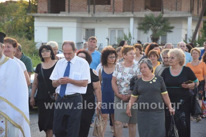 alexandriamou.gr_paisios2108platyDSC_0203
