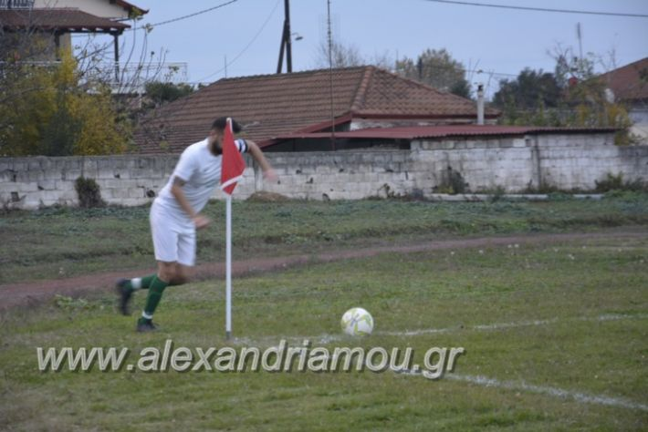alexandriamou.gr_platitrikala24.11056