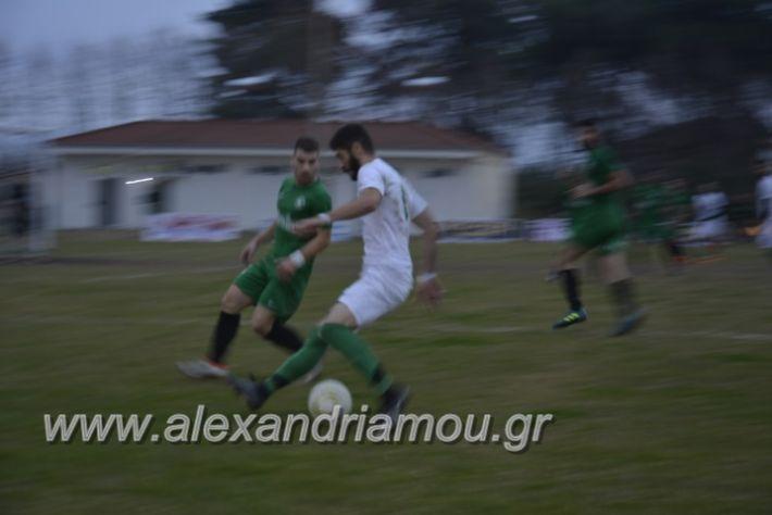 alexandriamou.gr_platitrikala24.11058