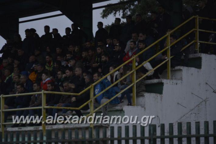 alexandriamou.gr_platitrikala24.11063