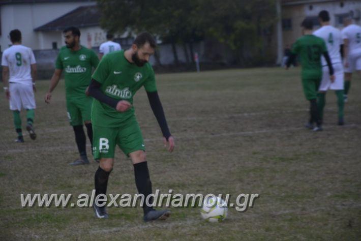 alexandriamou.gr_platitrikala24.11073