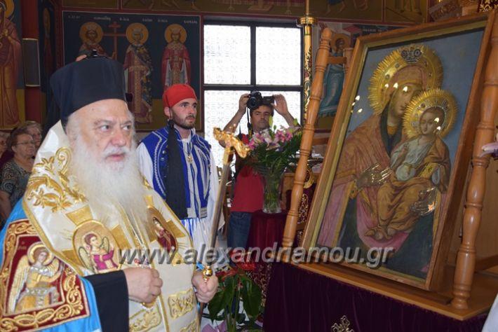 alexandriamou.gr_panagiaagiotafitisa17060