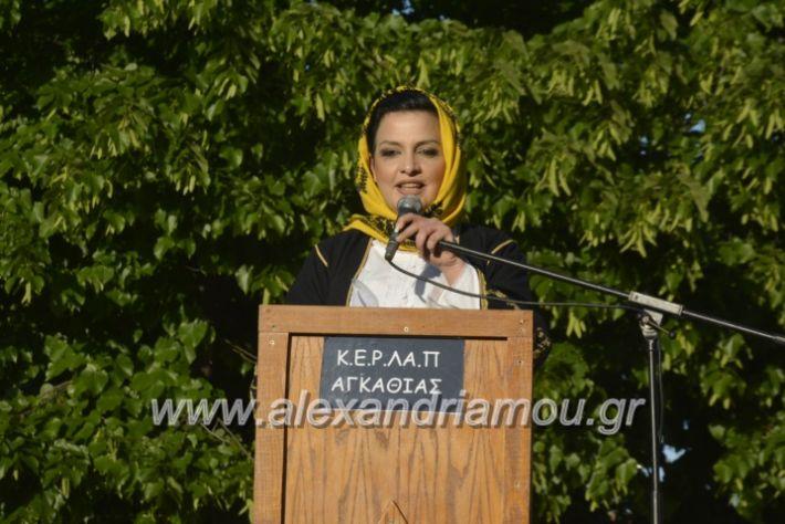 alexandriamou_agkathiapanigiri2019002