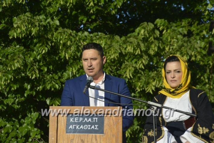 alexandriamou_agkathiapanigiri2019005