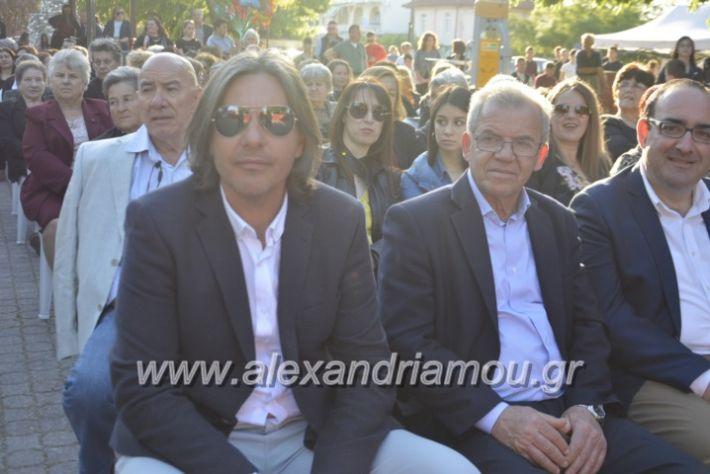 alexandriamou_agkathiapanigiri2019010
