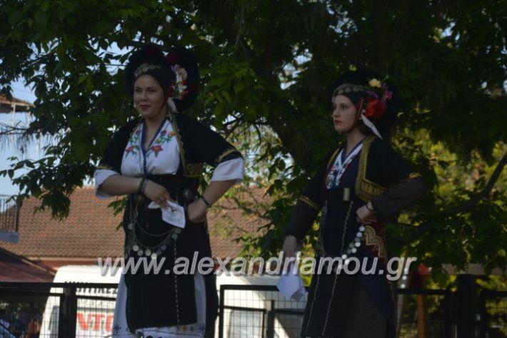 alexandriamou_agkathiapanigiri2019013