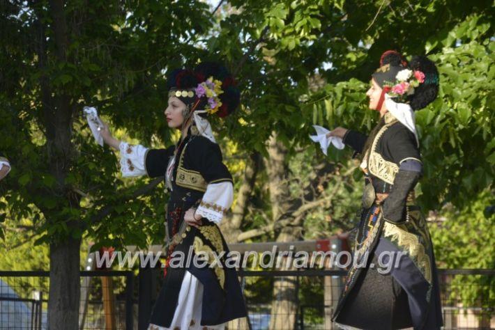 alexandriamou_agkathiapanigiri2019015