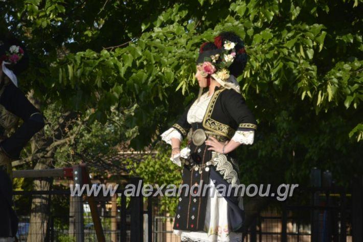 alexandriamou_agkathiapanigiri2019016