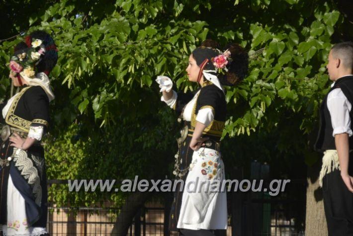 alexandriamou_agkathiapanigiri2019017