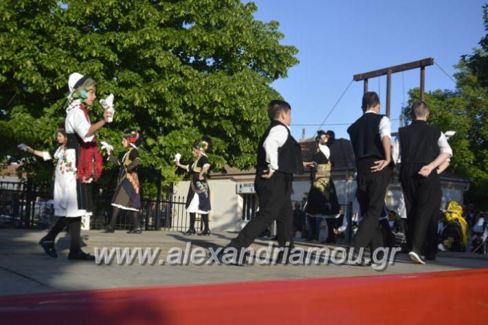 alexandriamou_agkathiapanigiri2019021