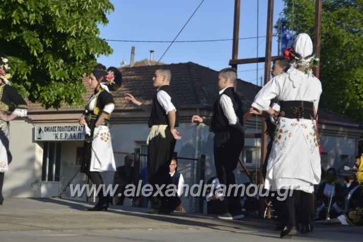 alexandriamou_agkathiapanigiri2019023
