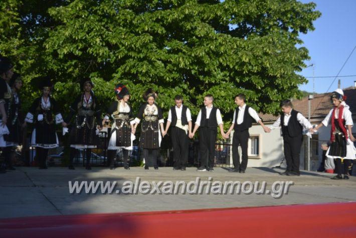 alexandriamou_agkathiapanigiri2019027