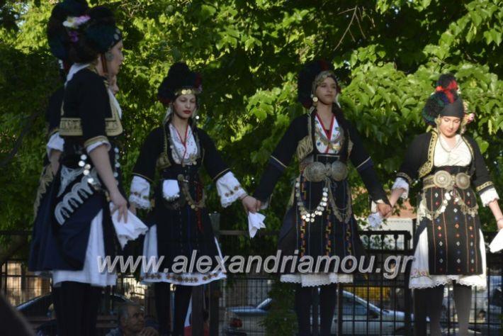 alexandriamou_agkathiapanigiri2019028
