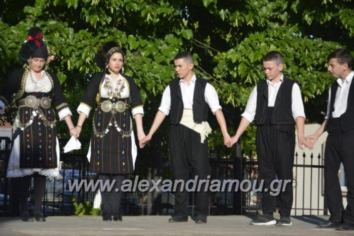 alexandriamou_agkathiapanigiri2019029