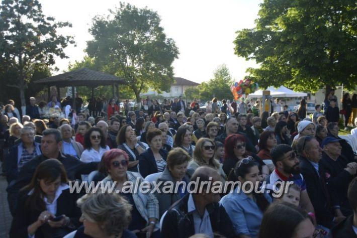 alexandriamou_agkathiapanigiri2019034