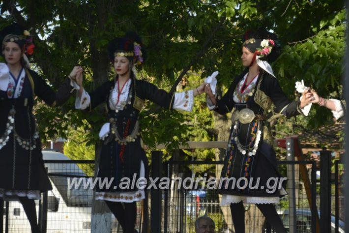 alexandriamou_agkathiapanigiri2019036