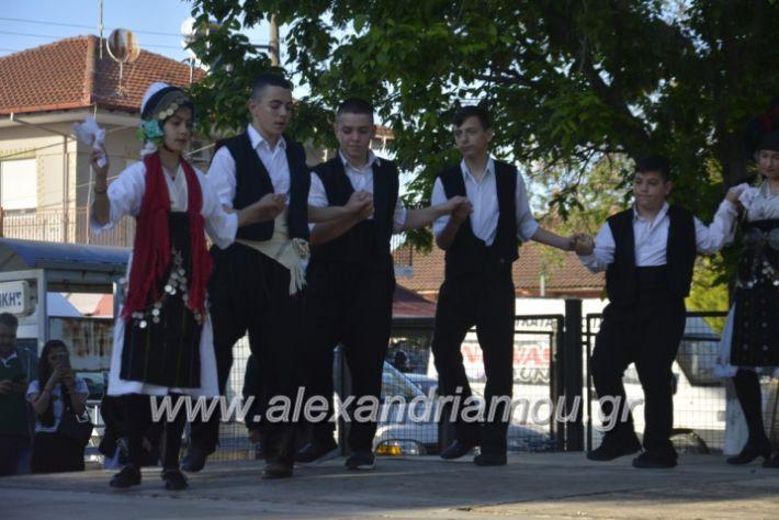 alexandriamou_agkathiapanigiri2019065