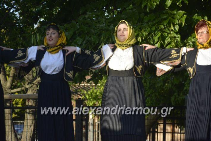 alexandriamou_agkathiapanigiri2019074