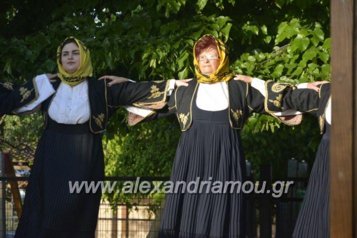 alexandriamou_agkathiapanigiri2019075