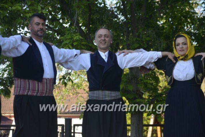 alexandriamou_agkathiapanigiri2019078
