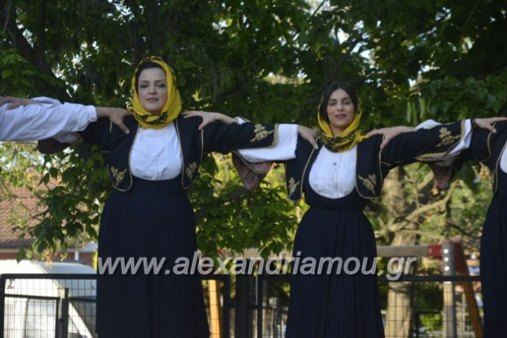 alexandriamou_agkathiapanigiri2019079
