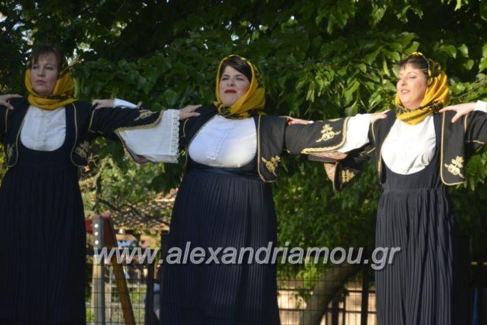 alexandriamou_agkathiapanigiri2019081