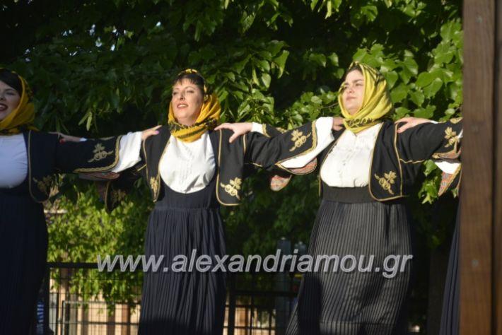 alexandriamou_agkathiapanigiri2019082