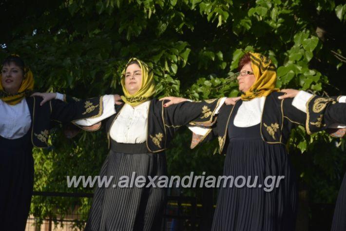 alexandriamou_agkathiapanigiri2019083