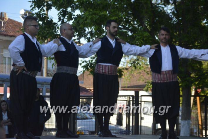 alexandriamou_agkathiapanigiri2019085