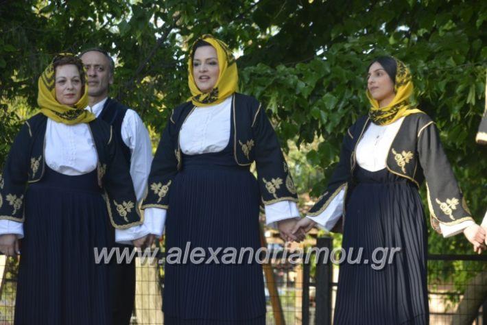 alexandriamou_agkathiapanigiri2019086