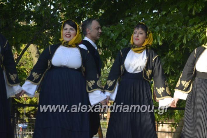 alexandriamou_agkathiapanigiri2019088