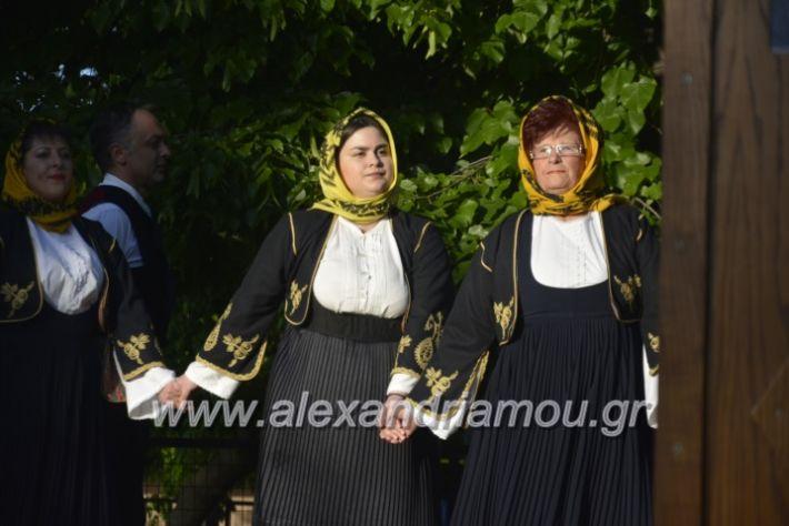 alexandriamou_agkathiapanigiri2019089