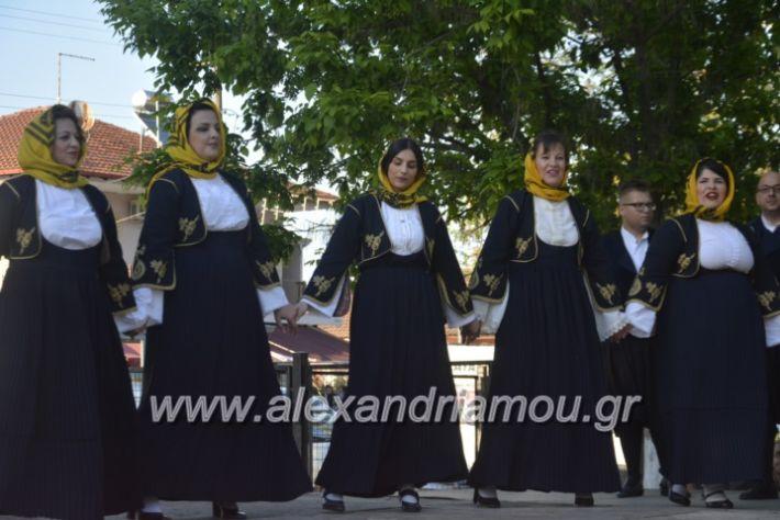 alexandriamou_agkathiapanigiri2019090