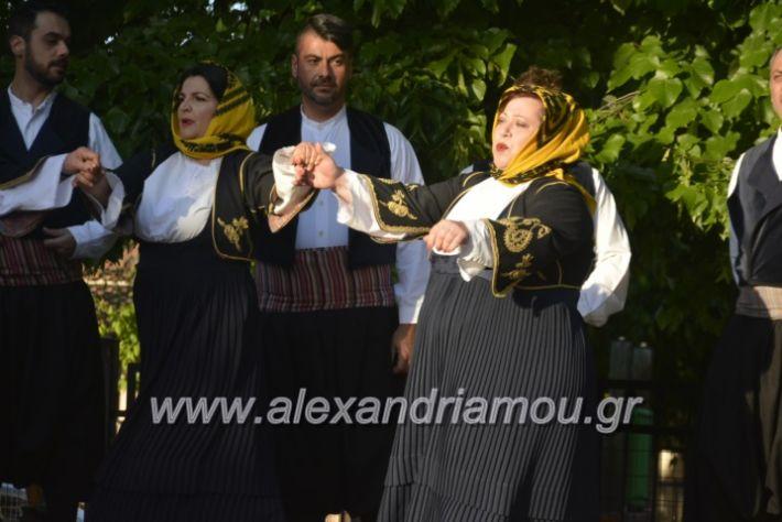 alexandriamou_agkathiapanigiri2019092