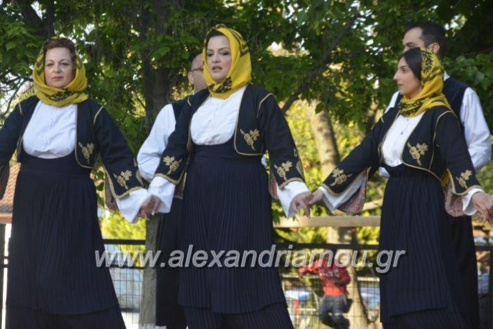 alexandriamou_agkathiapanigiri2019094
