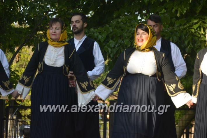 alexandriamou_agkathiapanigiri2019095