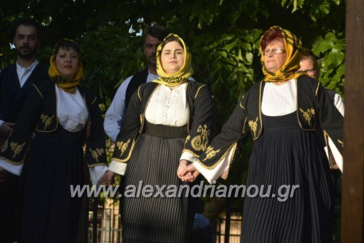 alexandriamou_agkathiapanigiri2019096