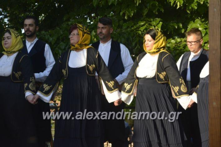 alexandriamou_agkathiapanigiri2019099