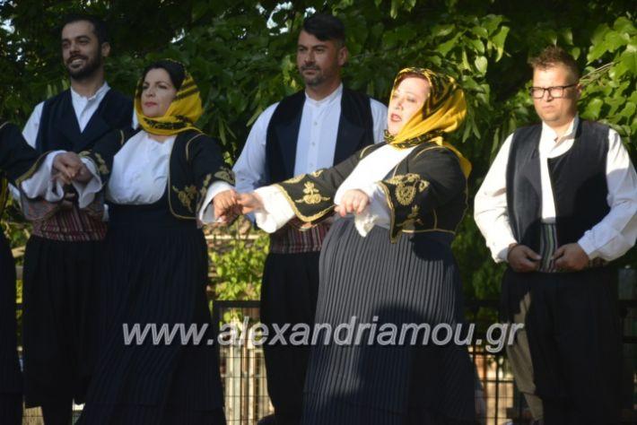 alexandriamou_agkathiapanigiri2019101