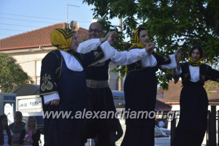 alexandriamou_agkathiapanigiri2019108